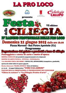 S. Pietro Apostolo festa-ciliegia-2015