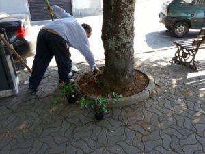 Scigliano lavori arredo urbano 3