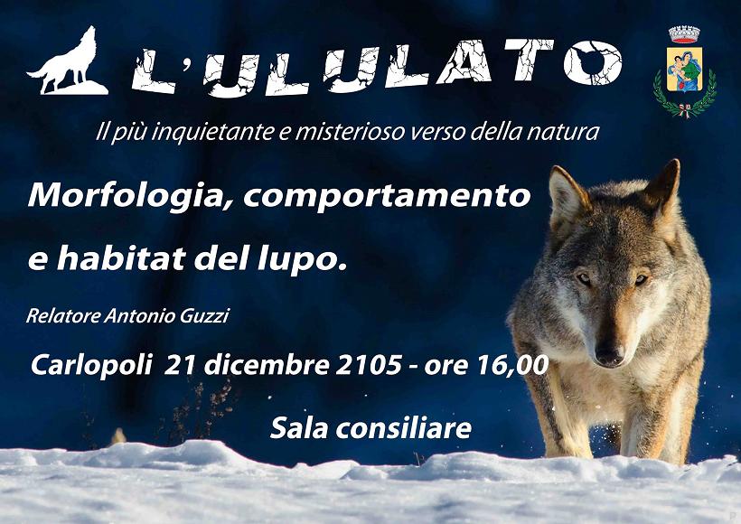 Carlopoli lupo convegno 21 dicembre 2015