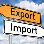 import export Calabria