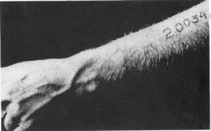 shoah foto braccio