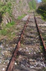 ferrovia frana tratto Scigliano