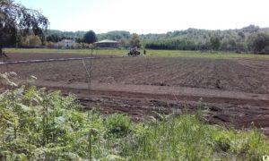 azienda agraria di Soveria Mannelli (2)