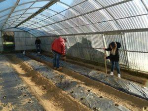 azienda agraria di Soveria Mannelli (6)
