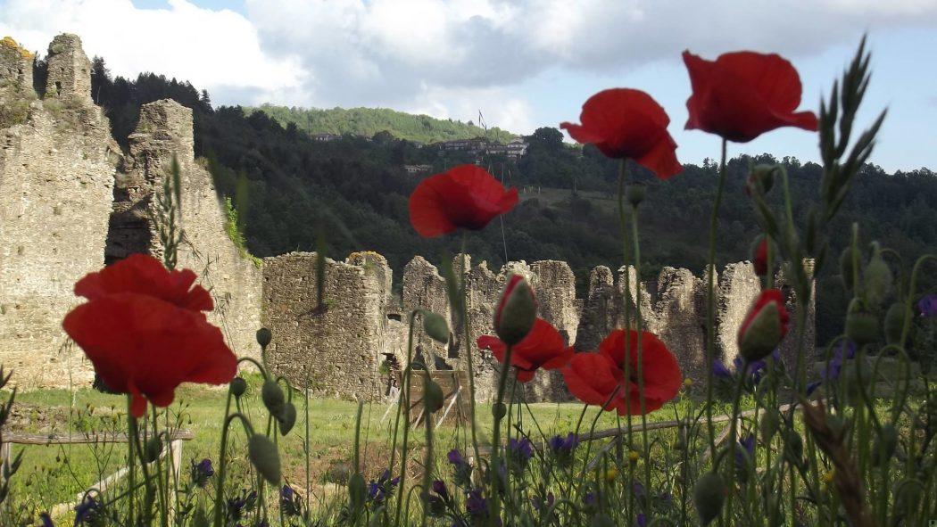 abbazia di corazzo_una montagna di pace1