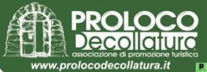 manifesto Pro Loco Decollatura logo verde