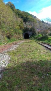 ferrovie-della-calabria-tratto-soveria-mannelli-rogliano
