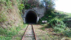 ferrovie-della-calabria-tratto-soveria-mannelli-rogliano-altra-foto