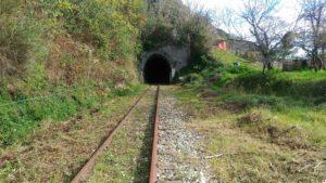ferrovie-della-calabria-tratto-soveria-mannelli-rogliano-foto